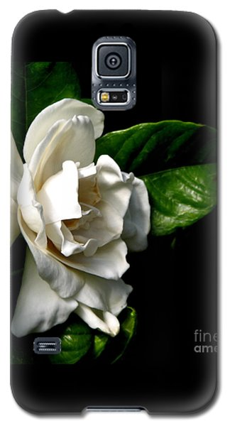 Galaxy S5 Case featuring the photograph White Gardenia by Rose Santuci-Sofranko