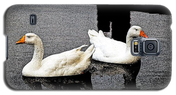 White Geese Galaxy S5 Case by Randy Sylvia