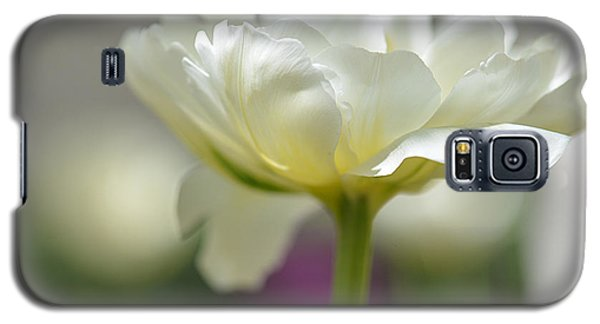 Galaxy S5 Case featuring the photograph White Green Tulip by JoAnn Lense