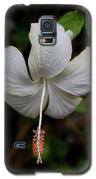White Hibiscus Galaxy S5 Case by Pamela Walton