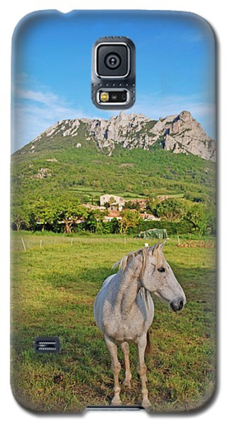 White Horse Dreaming Galaxy S5 Case