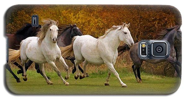 White Horse Vale Lipizzans Galaxy S5 Case