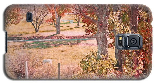 White Horse With Orange And Green Autumn Colors Galaxy S5 Case by Brooke T Ryan