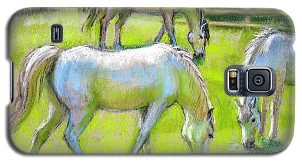 Galaxy S5 Case featuring the painting White Horses Grazing by Sue Halstenberg
