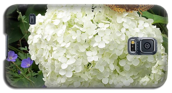 White Hydrangea With Butterfly Galaxy S5 Case