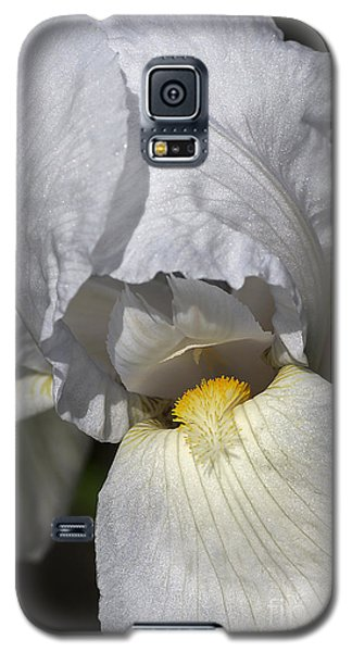 Galaxy S5 Case featuring the photograph White Iris by Joy Watson