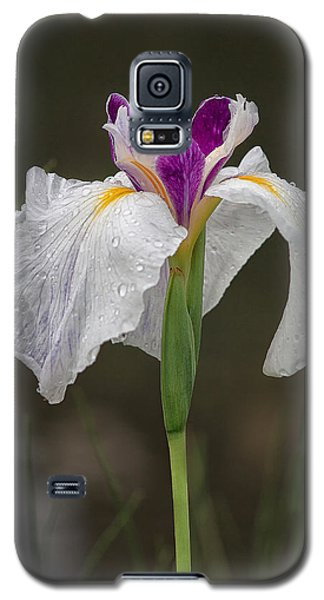 Galaxy S5 Case featuring the photograph White Iris by Shirley Mitchell