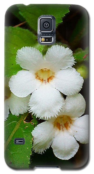 White Jungle Wildflower Galaxy S5 Case