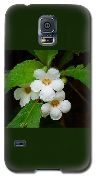 Galaxy S5 Case featuring the photograph White Jungle Wildflower by Blair Wainman