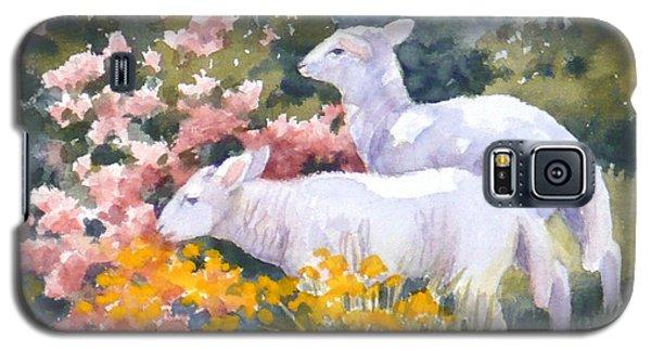 White Lambs In Scotland Galaxy S5 Case