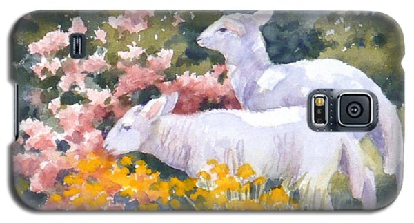 White Lambs In Scotland Galaxy S5 Case
