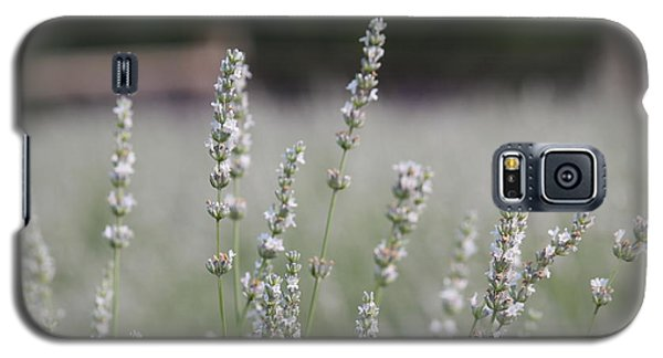 Galaxy S5 Case featuring the photograph White Lavender by Lynn Sprowl