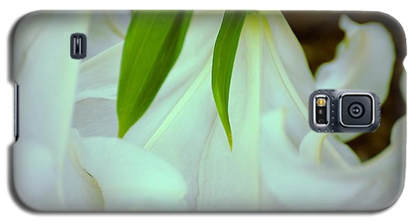White Lily Bows  Galaxy S5 Case
