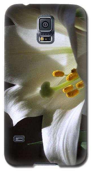 White Lily Galaxy S5 Case by Kay Novy