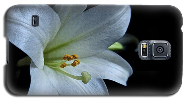 Galaxy S5 Case featuring the photograph White Lily On Black by Lori Miller