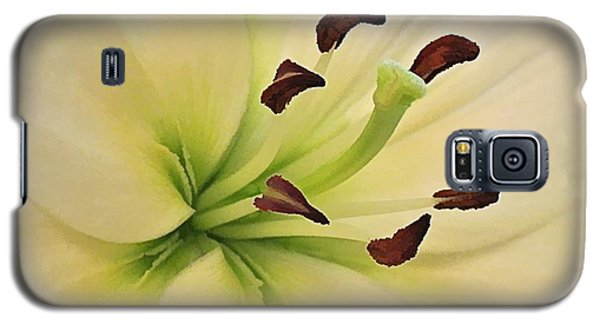 White Lily Pp-6 Galaxy S5 Case