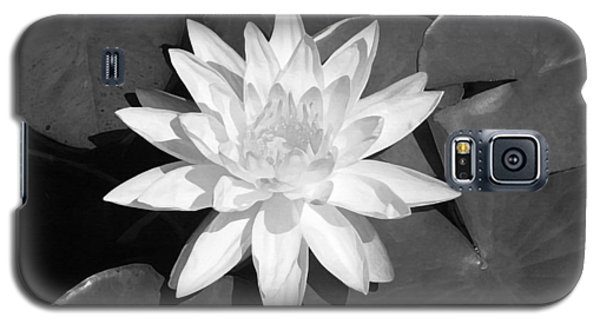 White Lotus 2 Galaxy S5 Case