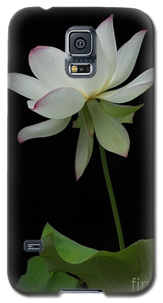 Galaxy S5 Case featuring the photograph White Lotus by Dodie Ulery