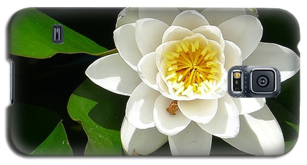 White Lotus Heart Leaf  Galaxy S5 Case