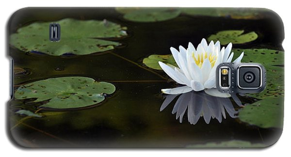 Galaxy S5 Case featuring the photograph White Lotus Lily Flower And Lily Pad by Glenn Gordon