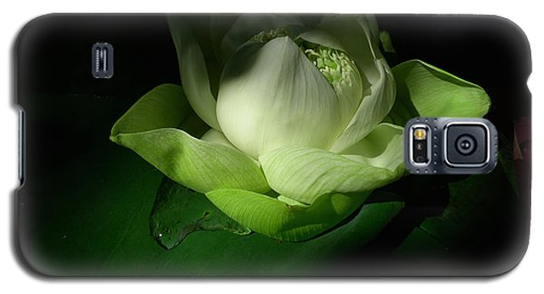 White Lotus Unfolding Galaxy S5 Case