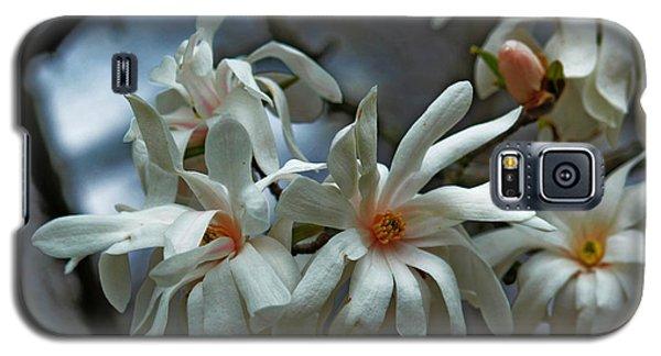 Galaxy S5 Case featuring the photograph White Magnolia by Rowana Ray