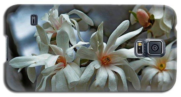White Magnolia Galaxy S5 Case by Rowana Ray