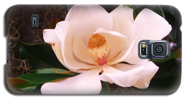 Galaxy S5 Case featuring the photograph White Magnolia by Yolanda Rodriguez