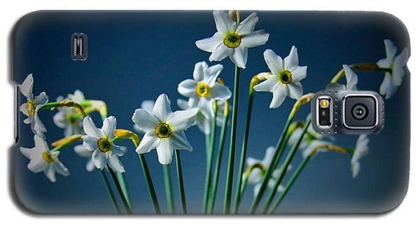 White Narcissus On A Dark Blue Background Galaxy S5 Case