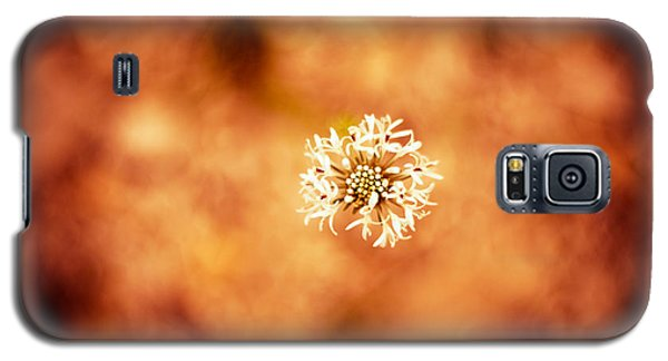 White On Orange Galaxy S5 Case by Darryl Dalton