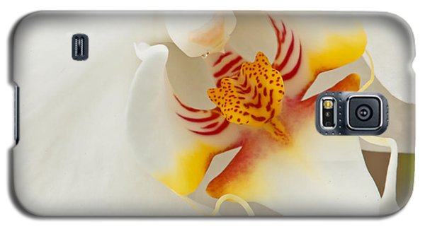 White Orchid 2 Galaxy S5 Case