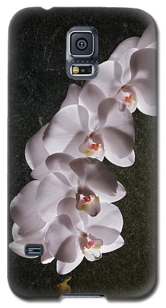White Orchid Still Life Galaxy S5 Case by Tom Mc Nemar