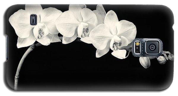 White Orchids Monochrome Galaxy S5 Case