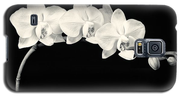 White Orchids Monochrome Galaxy S5 Case