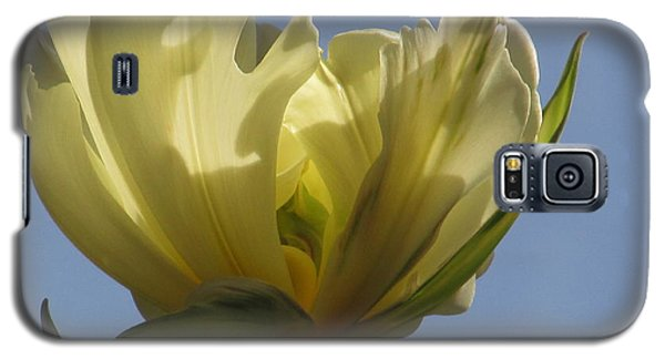 White Parrot Tulip Galaxy S5 Case