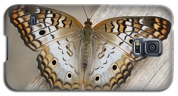 White Peacock Butterfly Galaxy S5 Case by Judy Whitton