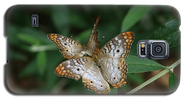 Galaxy S5 Case featuring the photograph White Peacock Butterflies by Cathy Harper