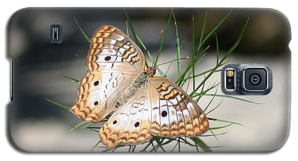 Galaxy S5 Case featuring the photograph White Peacock by Karen Silvestri