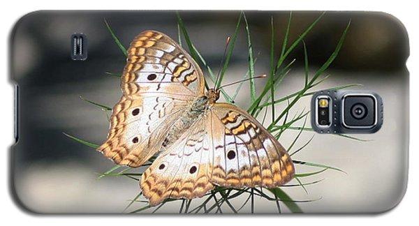 White Peacock Galaxy S5 Case by Karen Silvestri