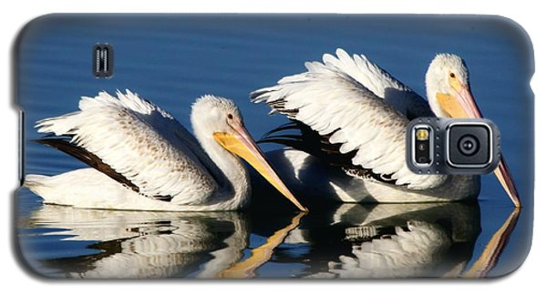 White Pelican Pair Galaxy S5 Case