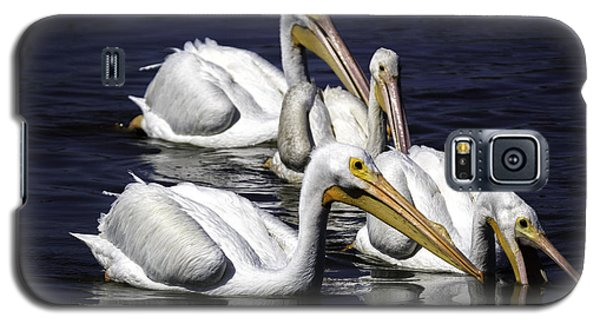 White Pelicans Fishing Galaxy S5 Case