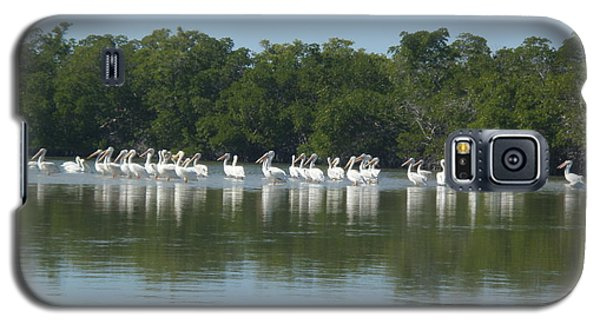 Galaxy S5 Case featuring the photograph White Pelicans by Robert Nickologianis