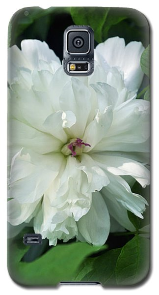 Galaxy S5 Case featuring the photograph White Peonese by Verana Stark