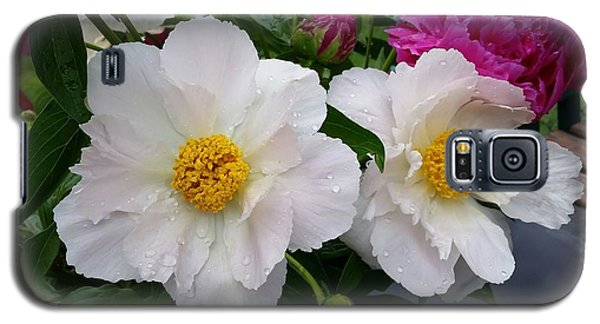 Galaxy S5 Case featuring the photograph White Peony Flower by Rose Wang