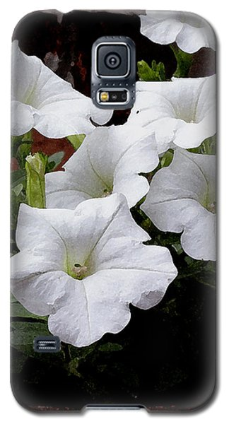 White Petunia Blooms Galaxy S5 Case