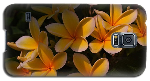 Galaxy S5 Case featuring the photograph White Plumeria by Miguel Winterpacht