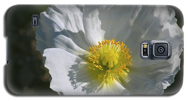Galaxy S5 Case featuring the photograph White Poppy by Rima Biswas