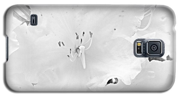 White  Rhoadie Galaxy S5 Case