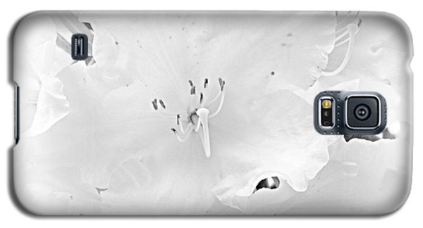 White  Rhoadie Galaxy S5 Case