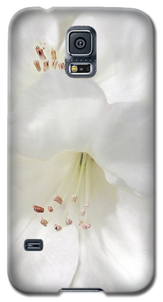 White Rhododendron Flowers Galaxy S5 Case